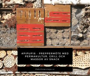 Pipup18-Preppermöte-med-Permakultur-grill-och-massor-av-snack